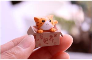 比彩 箱の中のかわいい猫