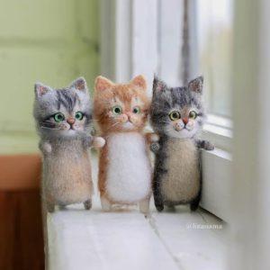 窓辺を見つめる猫ちゃん