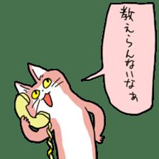 猫 どうして 電話