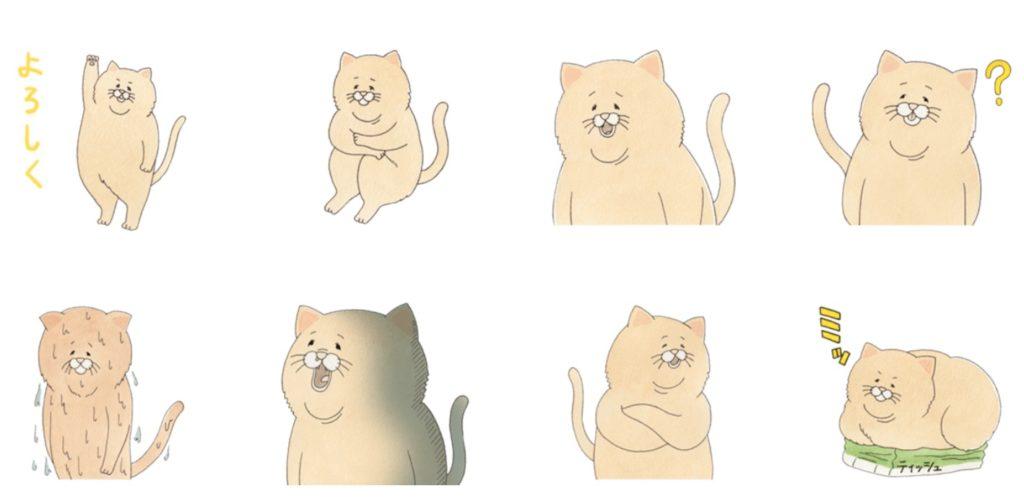 ネコのひー