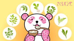 さくらパンダ 七草粥
