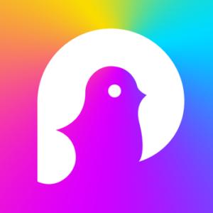 ばどしん結成のきっかけとなったアプリ「pokekara」